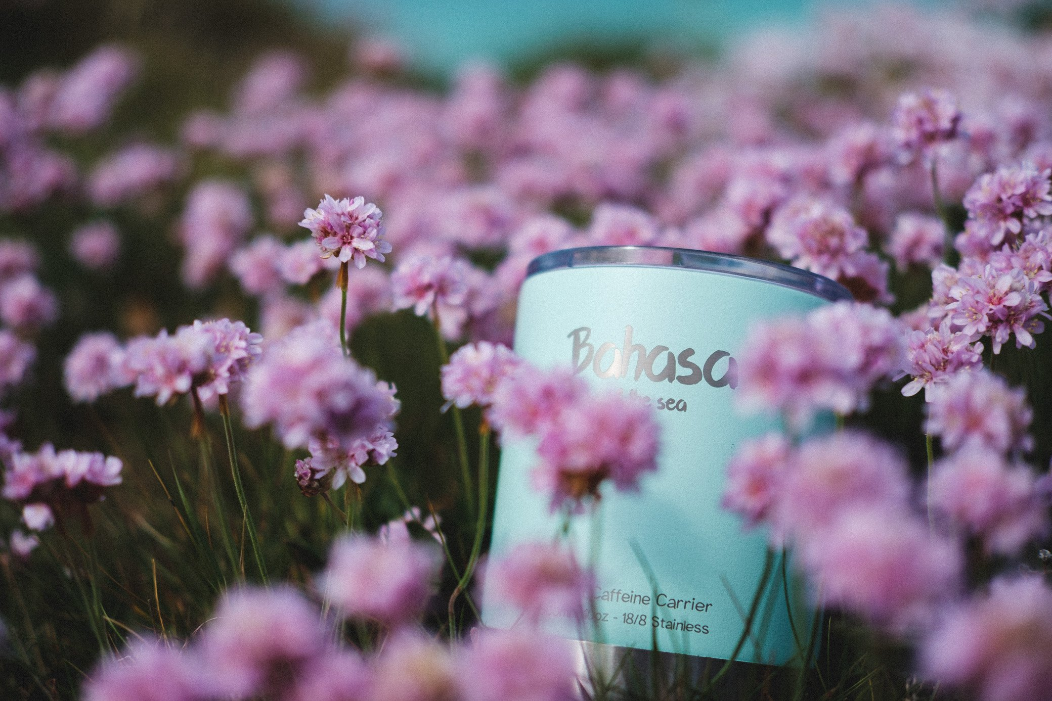 Bahasa cup in flowers